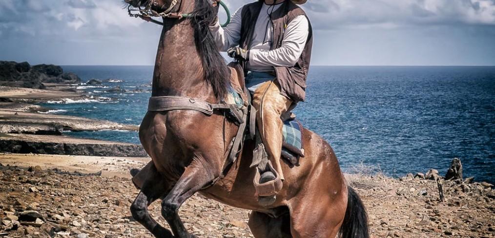 Cowboy, Aruba