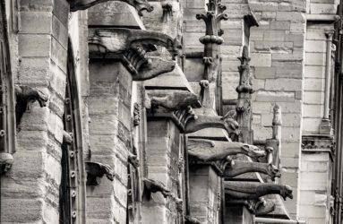Notre Dame Gargoyles, Paris, France