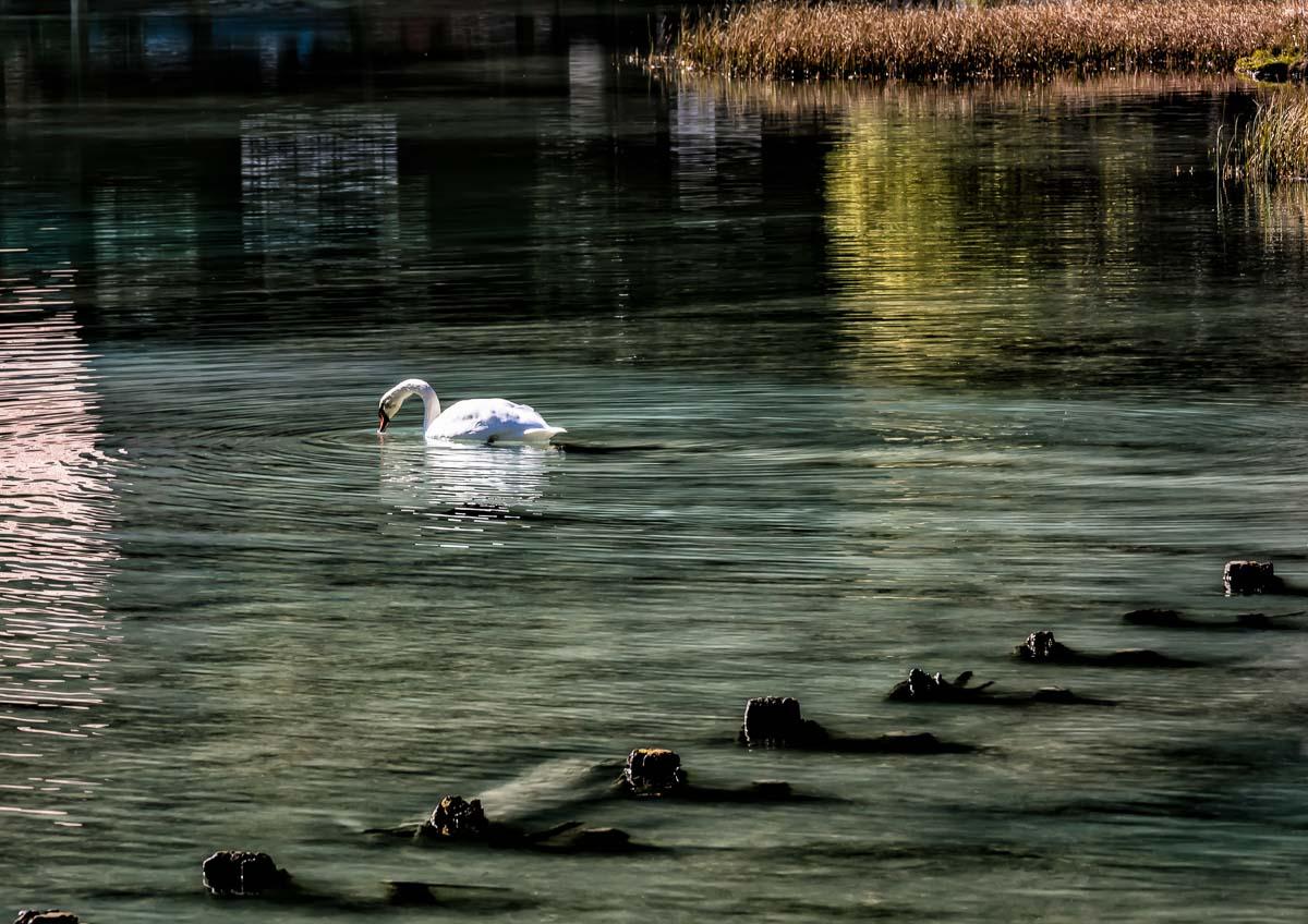 Lakes9