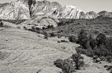 Snow Canyon State Park, UT