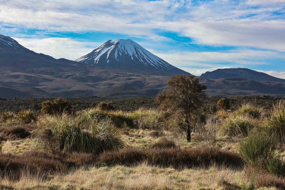 Tongariro14